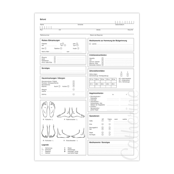 Anamnesebogen Wellvet<br>DIN A4