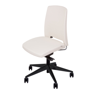 Ergonomic Chair Comfortable<br>Standard